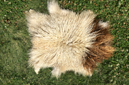 DIY Sheep Crafts | At Home Sheepskin Tanning | Shepherd Like A Girl