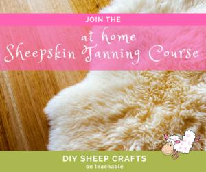 DIY Sheep Crafts | at home Sheepskin Tanning Course | Shepherd Like A Girl